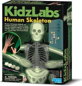 4M Glow Human Skeleton