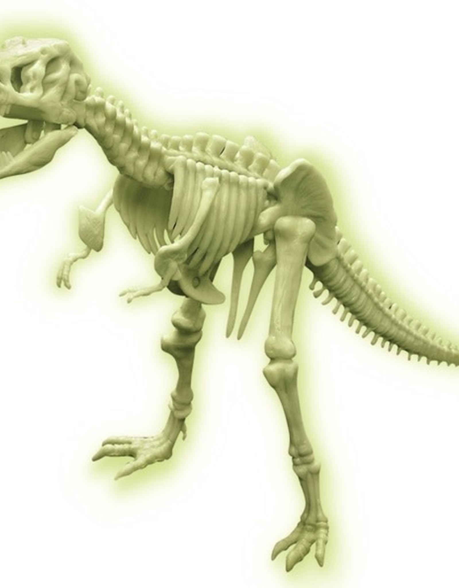 4M Glow T-Rex Skeleton
