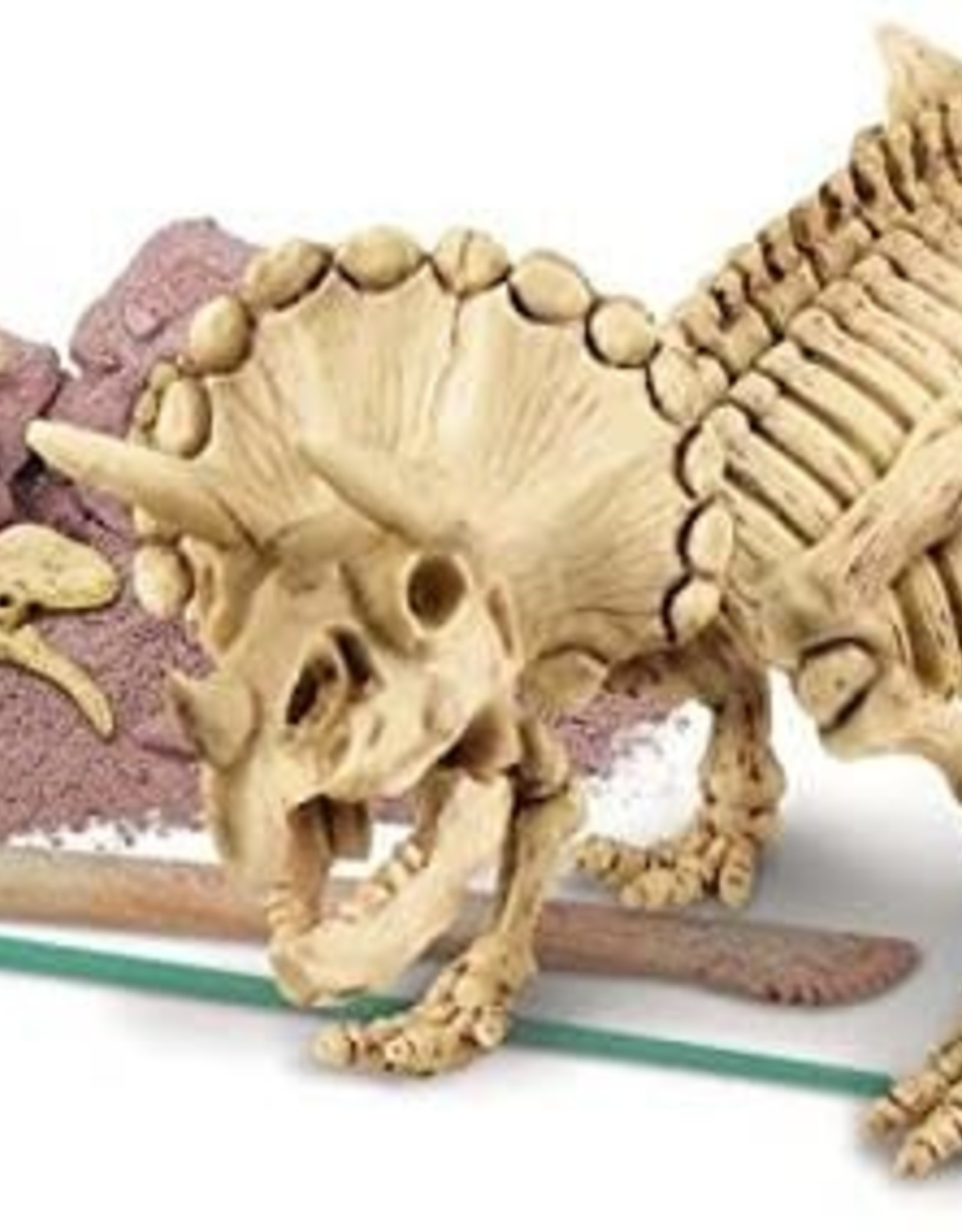 4M Dig a Triceratops