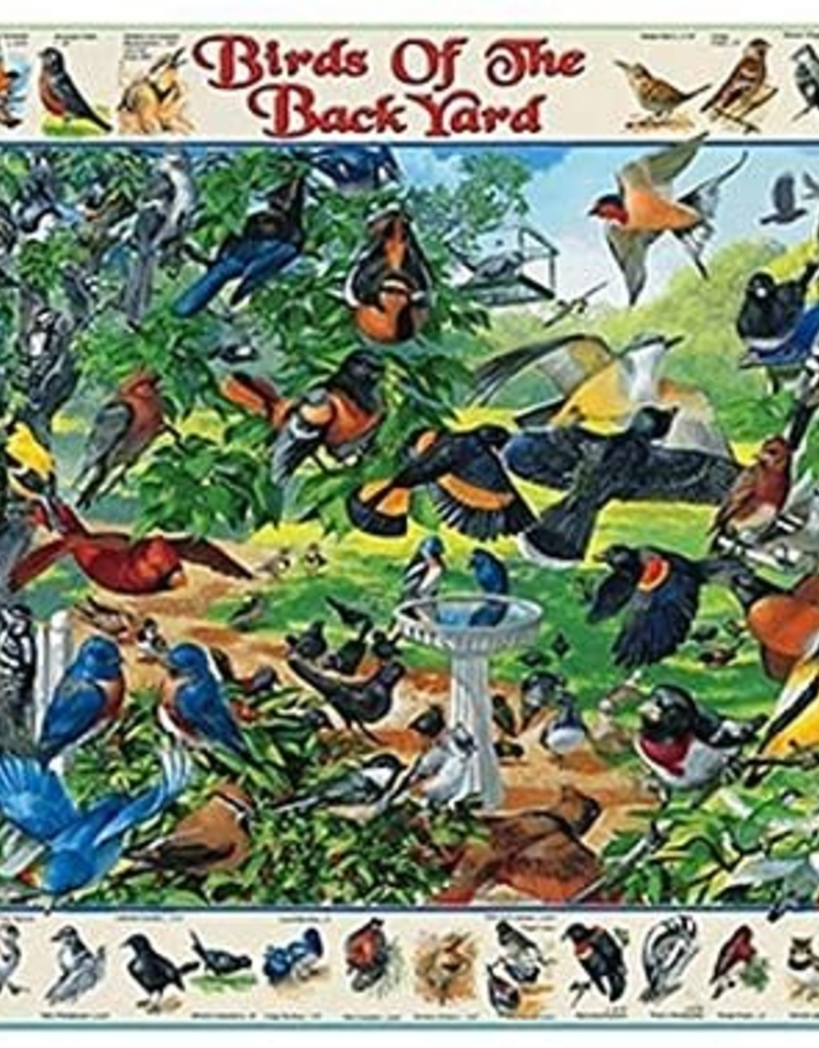 White Mountain BIRDS OF THE BACK YARD 1000 PIECES