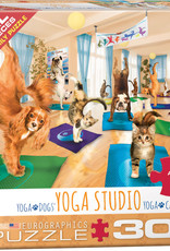 Eurographics Yoga Studio 300pc