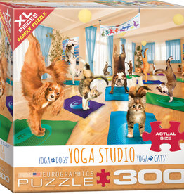 Eurographics Yoga Studio 300pc