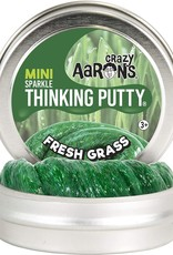Crazy Aaron's Thinking Putty Small Tin - Fresh Grass