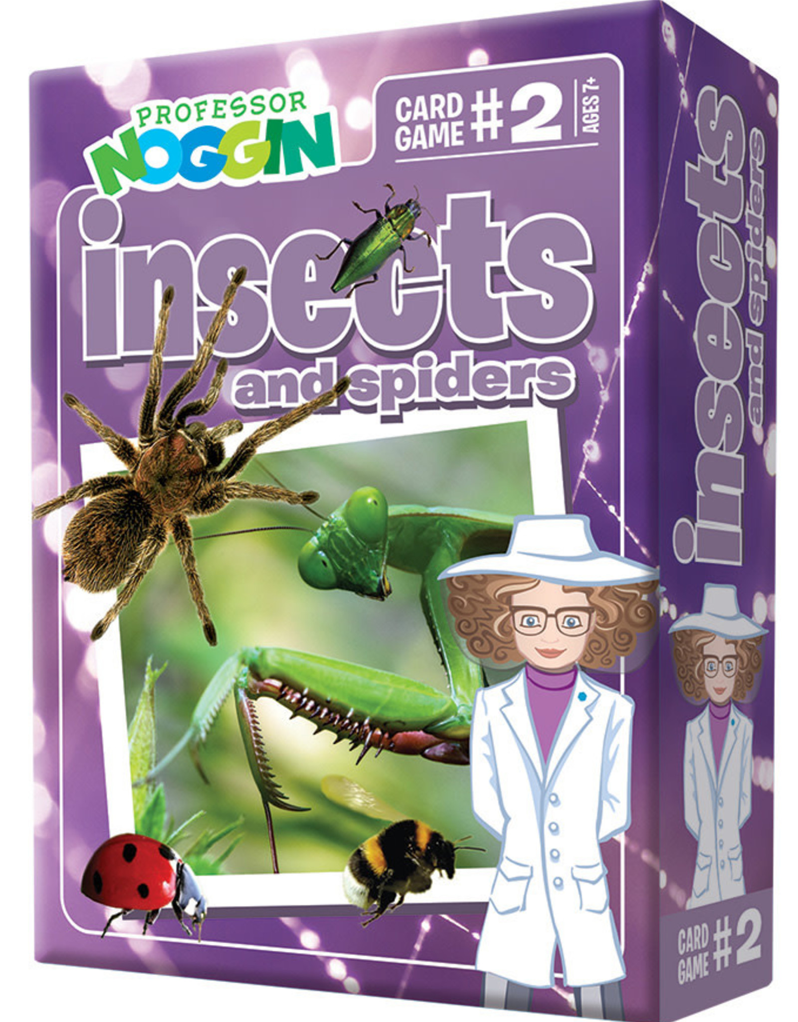 Professor Noggin Prof. Noggin Insects and Spiders