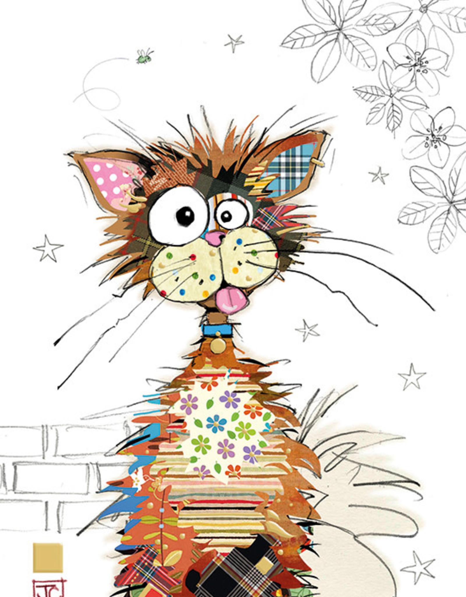 Incognito Card Kooks-Ziggy Cat