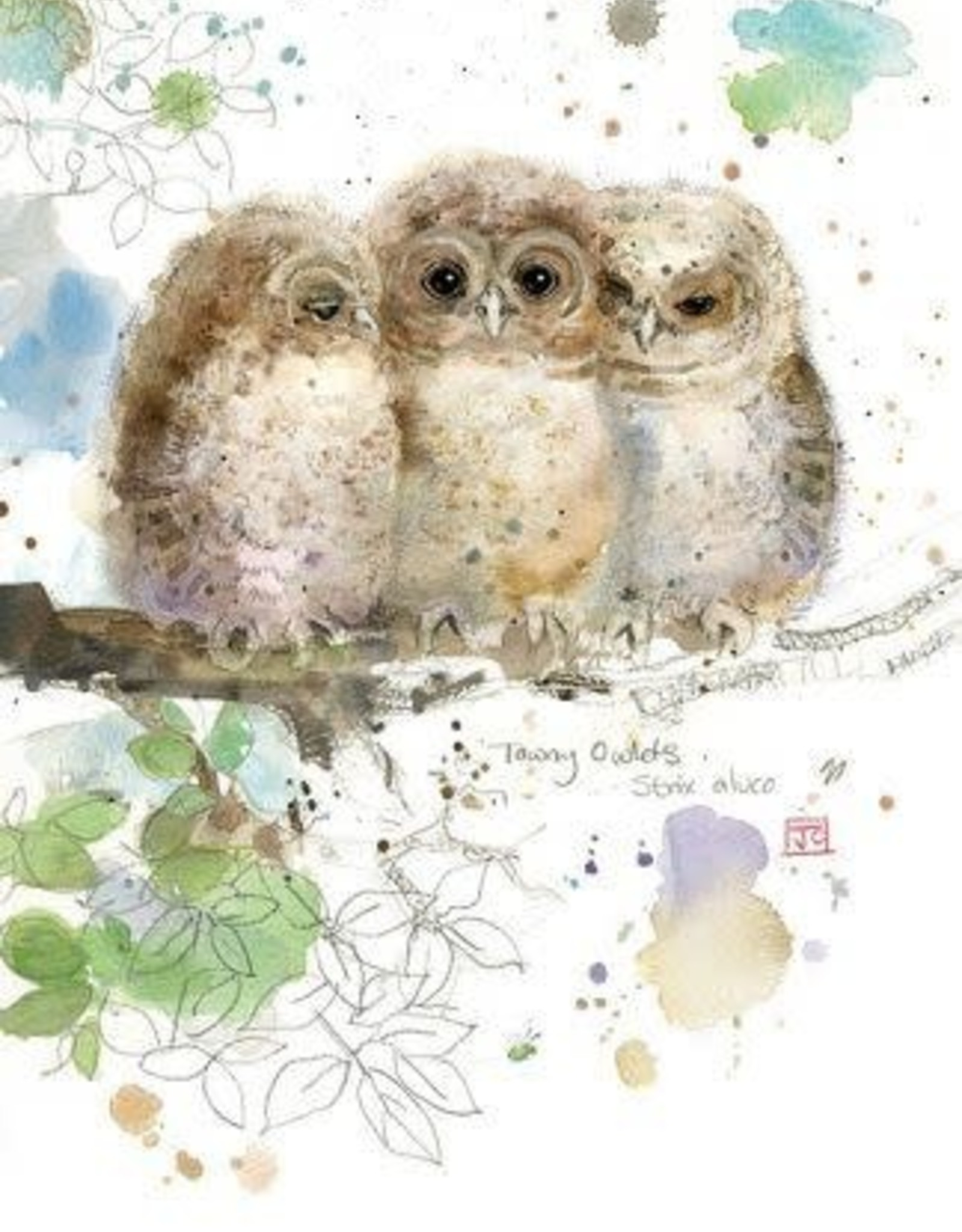 """Incognito CRITTERS - THREE OWLS - BLANK (5"""" X 7"""")"""