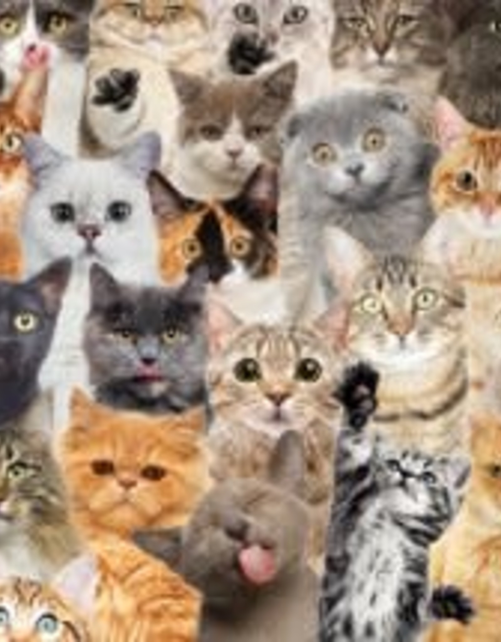 Peter Pauper Press Jigsaw Puzzle: All the Cats