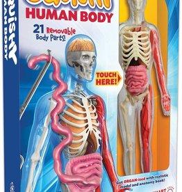 SmartLab Squishy Human Body