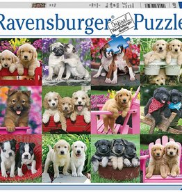 Ravensburger Puppy Pals  (500 pc)