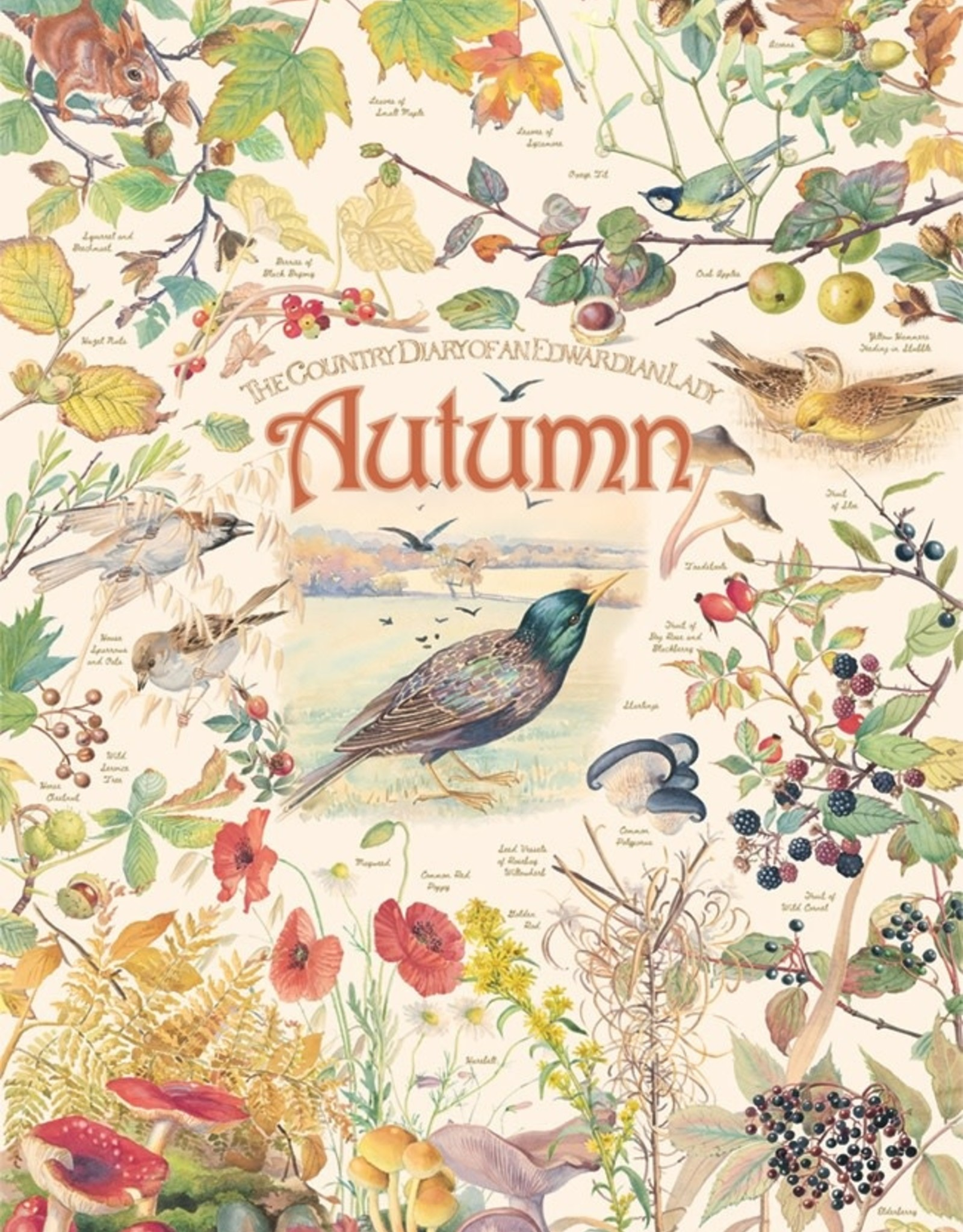 Cobble Hill Country Diary: Autumn 1000pc