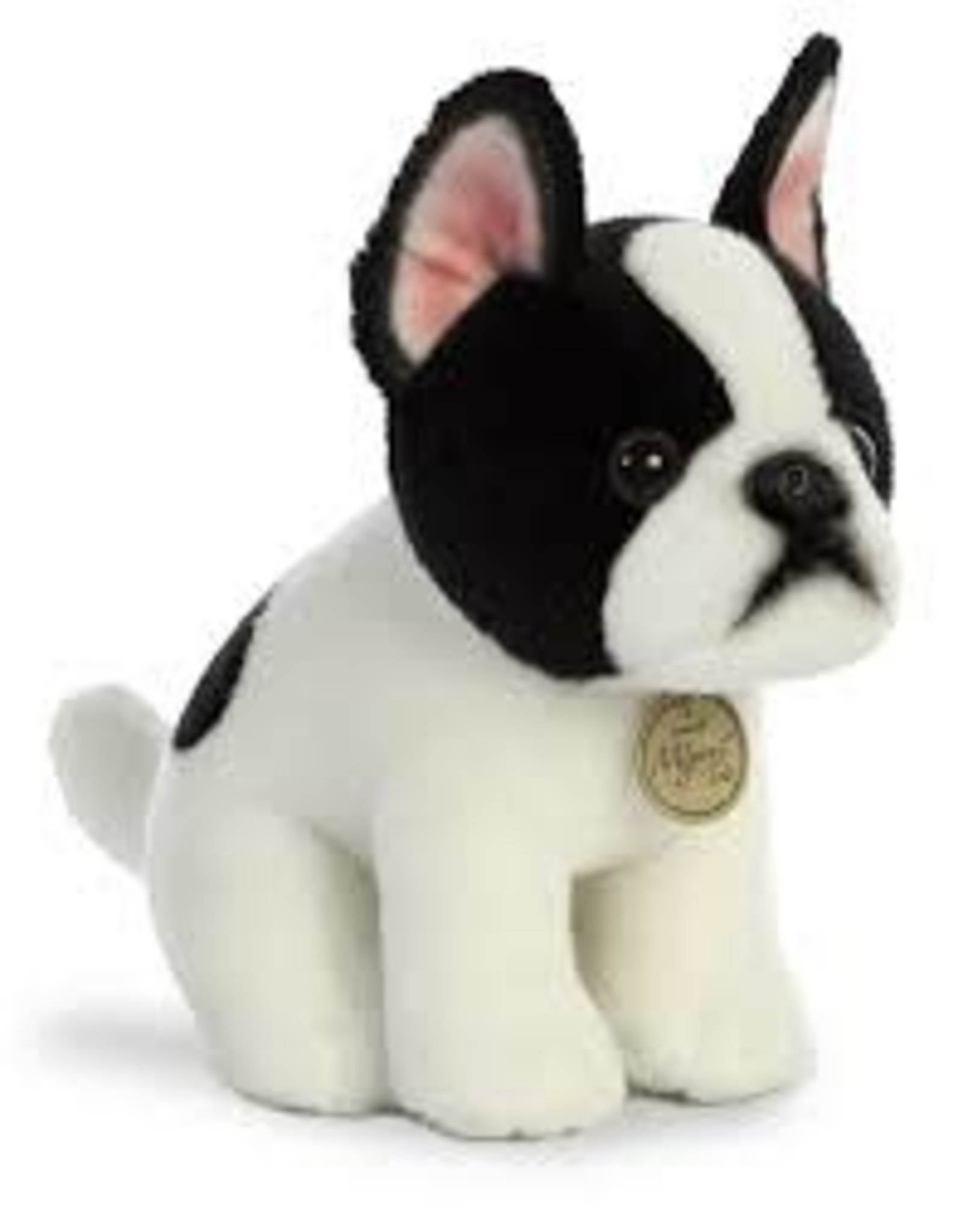 Aurora M Tots Boston Terr Pup 11""