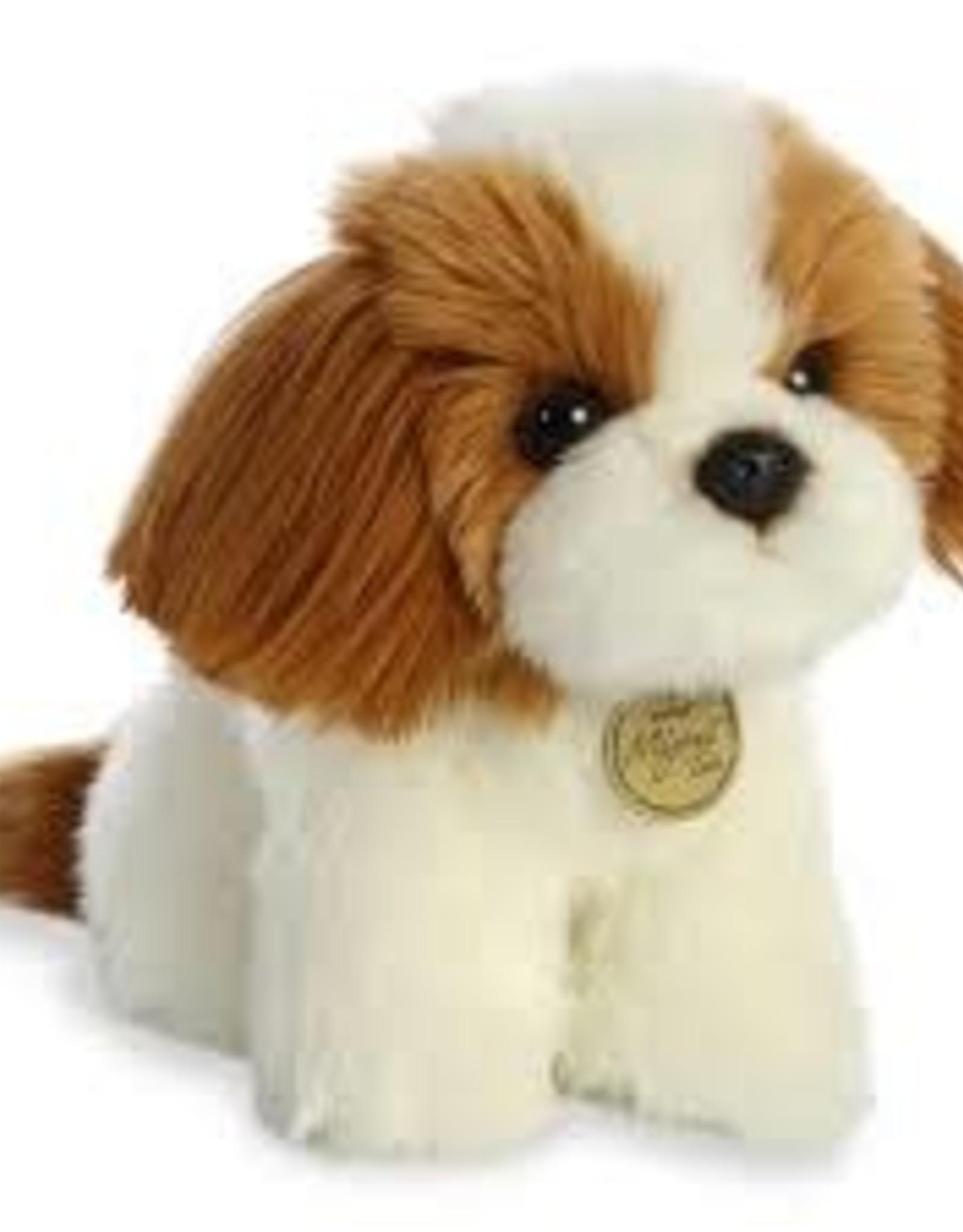 "Aurora M Tots-Shih Tzu Pup 11"""
