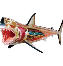 TEDCO 4D Great White Shark