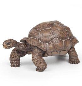 Papo Papo Galapagos Tortoise