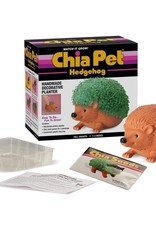 Chia Pet Chia Hedgehog