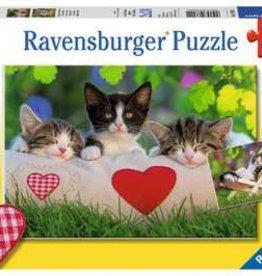 Ravensburger Sleepy Kittens (2 x 24 pc)