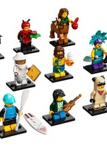 LEGO 71029 Series 21 Minifigures V141