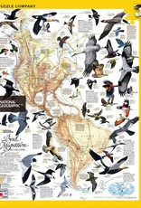 National Geographic BIRD MIGRATION 1000pc