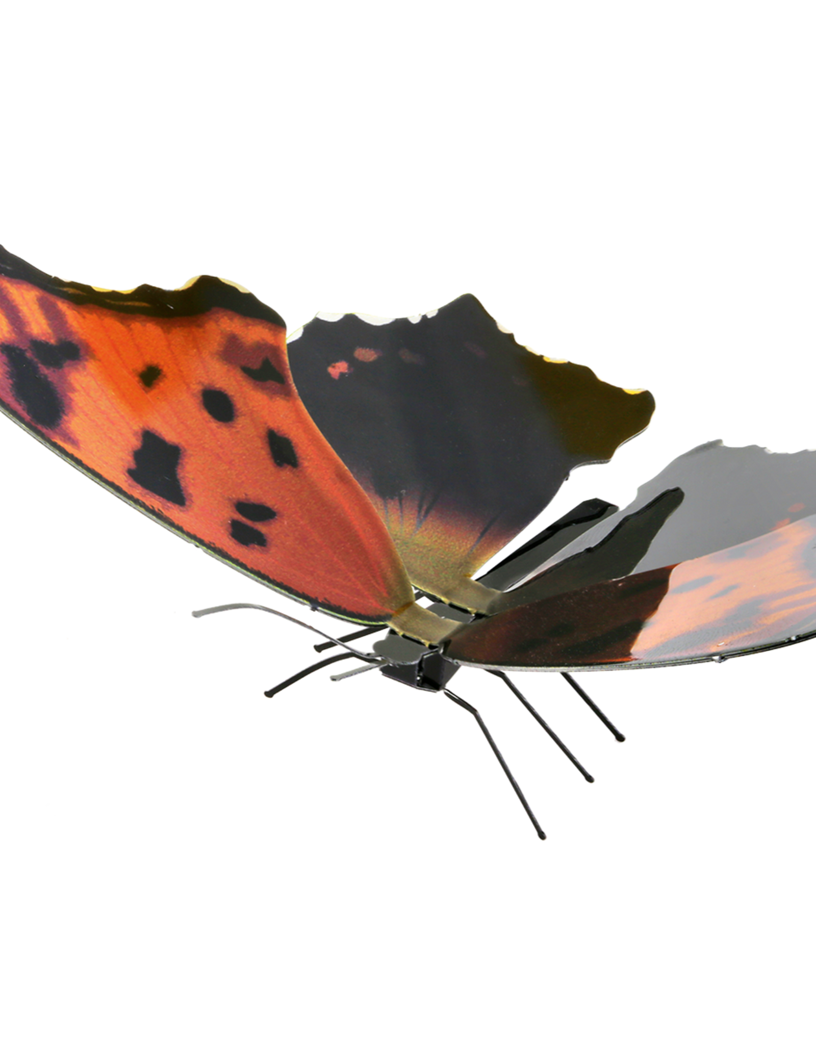 MetalEarth M.E., Eastern Comma Butterfly, 1 sh.