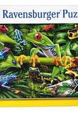 Ravensburger Amazing Amphibians 35p