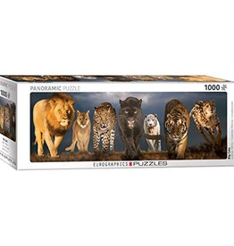 Eurographics Big Cats 1000pc