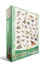 Eurographics Birds 1000pc