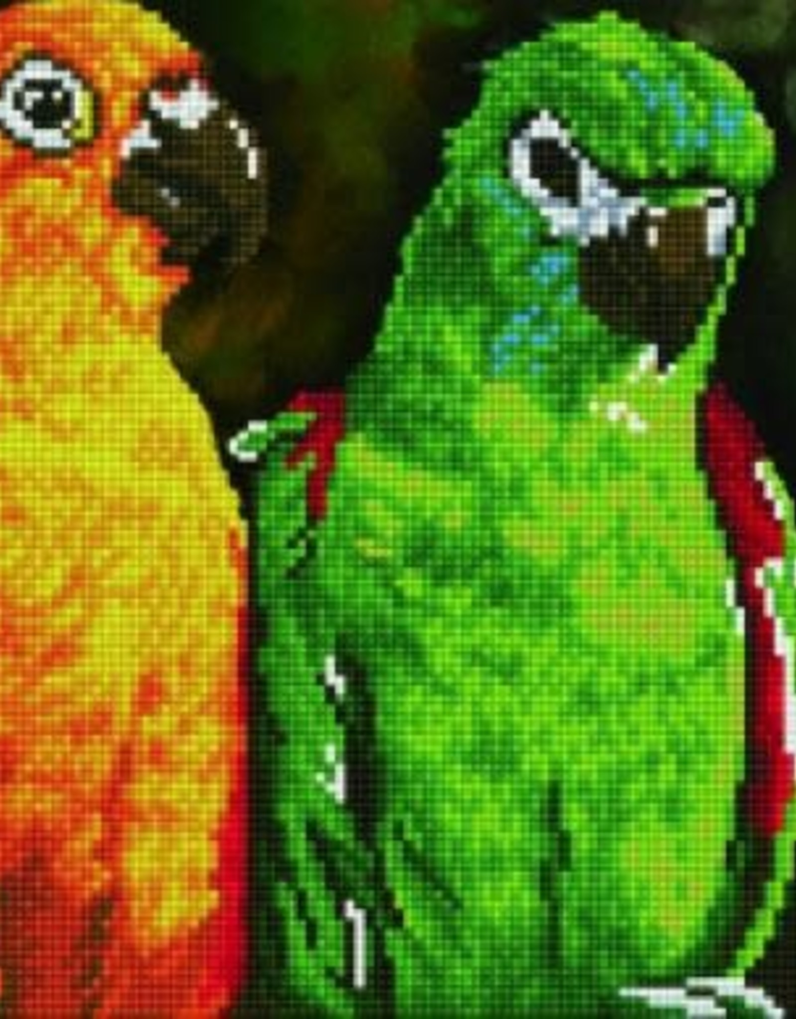 Diamond Dotz Diamond Dotz - Rainbow Parrots