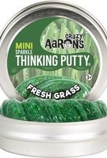 Crazy Aaron's Thinking Putty Crazy Aaron's Mini Tin -  Fresh Grass (Sparkle)