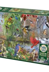 Cobble Hill Birds of the Season 1000pc
