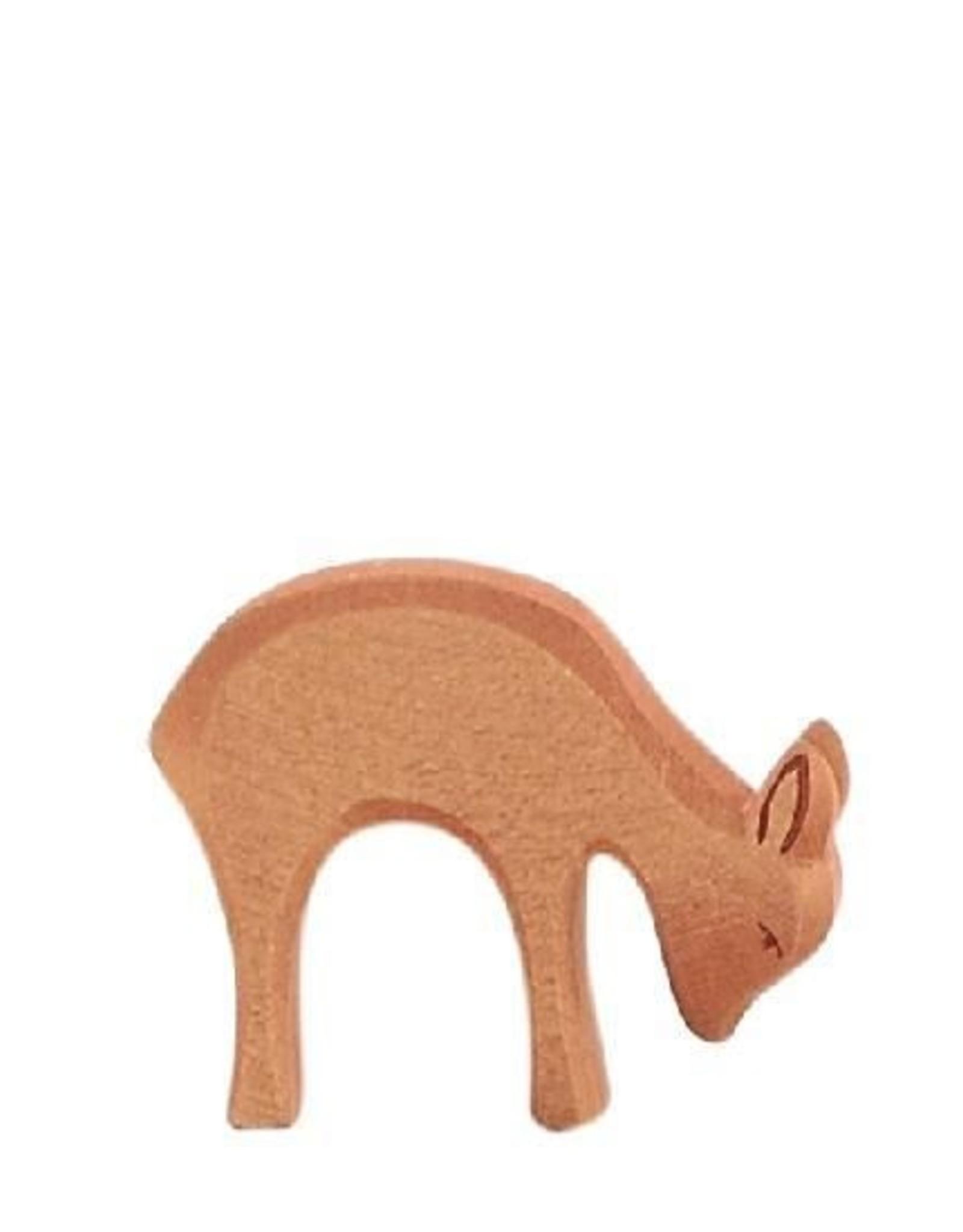 Ostheimer Deer Eating