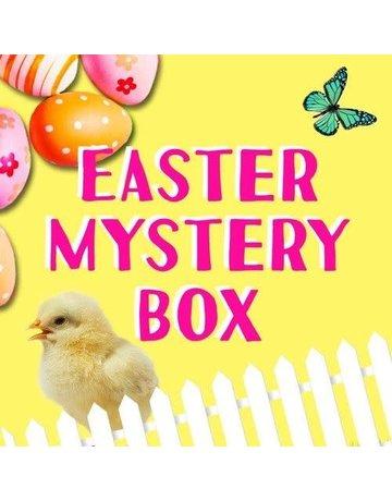 Kid Friendy Easter Mystery Box