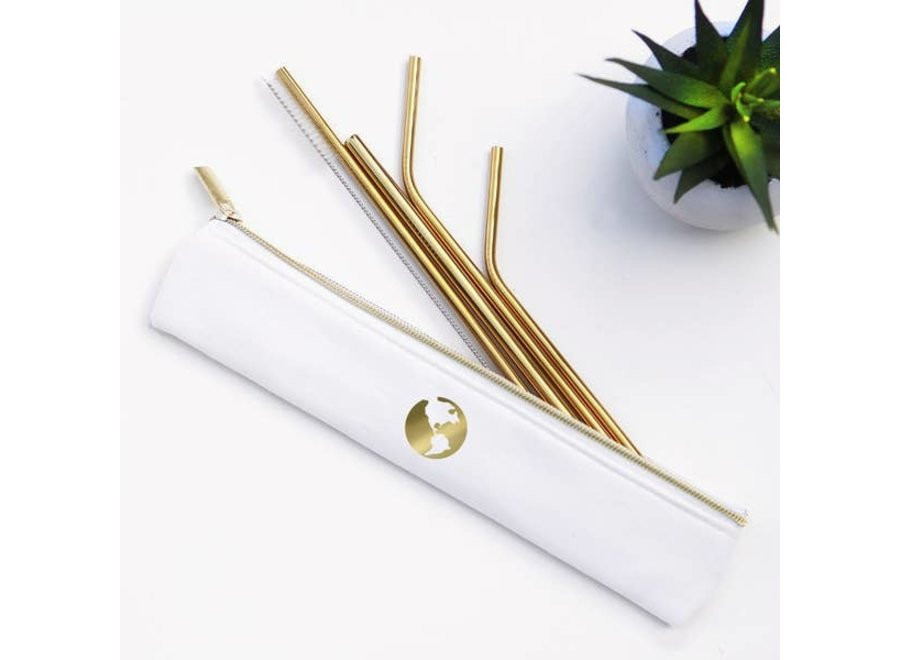Metal Straw Set w/ Carry bag & Cleaning Brush