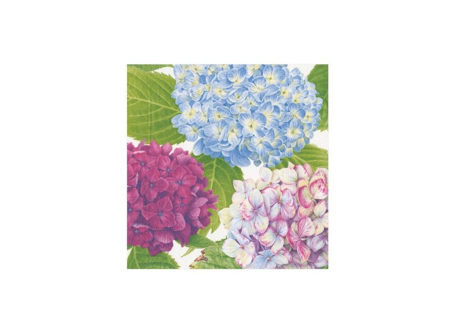 Hydrangea Garden Paper Cocktail Napkins in Blue - 20 Per Package