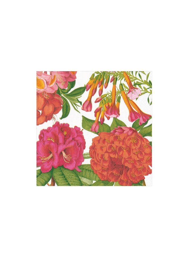 Jefferson's Garden Study Paper Cocktail Napkins in White - 20 Per Package