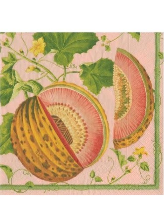 Brookshaw Melons Paper Cocktail Napkins in Melon - 20 Per Package