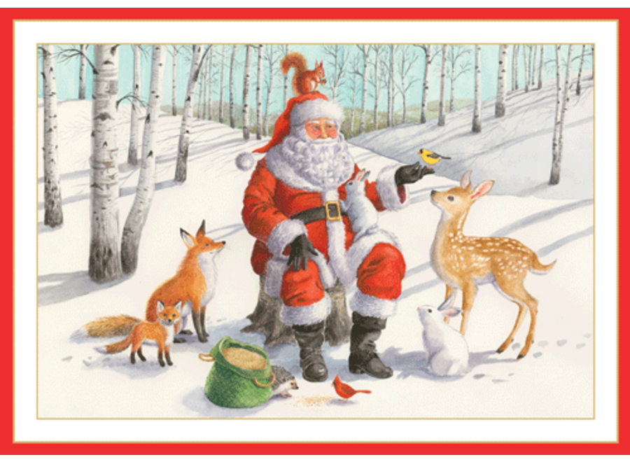 Santa With Animals Christmas Card Box 16 Count