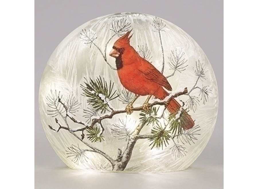 "8""LED Glass Cardinal Flat Dome On Pine Branches Batteries Included"