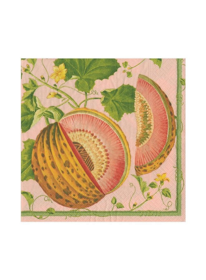 Brookshaw Melons Paper Luncheon Napkins in Melon - 20 Per Package