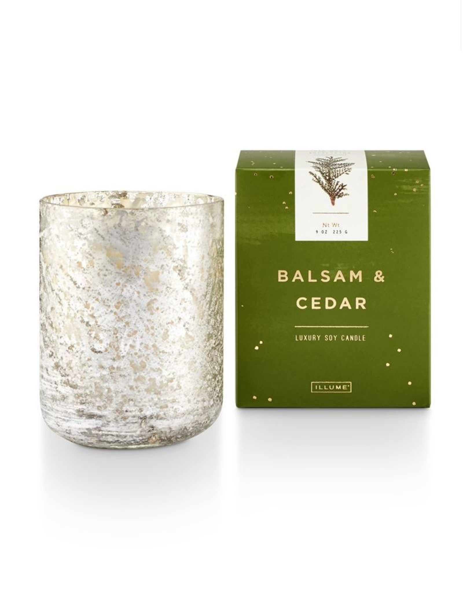 Illume Balsam & Cedar Small Luxe Boxed Candle