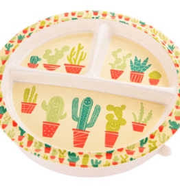 Ore Divided Suction Plate - Happy Cactus