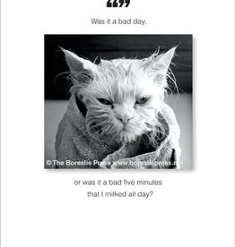 Borealis Press What Is A Bad Day Card