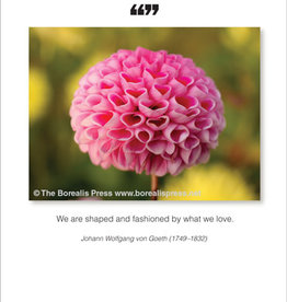 Borealis Press We Are Shaped Card