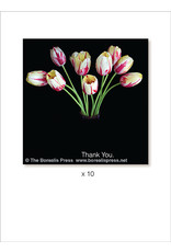 Borealis Press Thank You x 10 Card