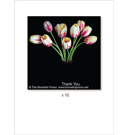 Borealis Press Thank You x 10 Card