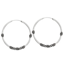 Tiger Mountain Twisted Wire Hoop Earrings