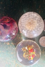 Belart Paperweight Botanical Orb