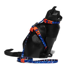 Atlanta Harness + Leash Set