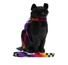 Prisma Cat Harness + Leash Set