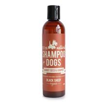 Carrotseed & Juniper Organic Shampoo