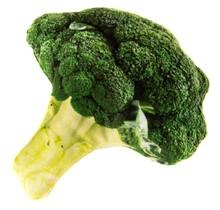 Catnip Plush Broccoli Cuddle Toy